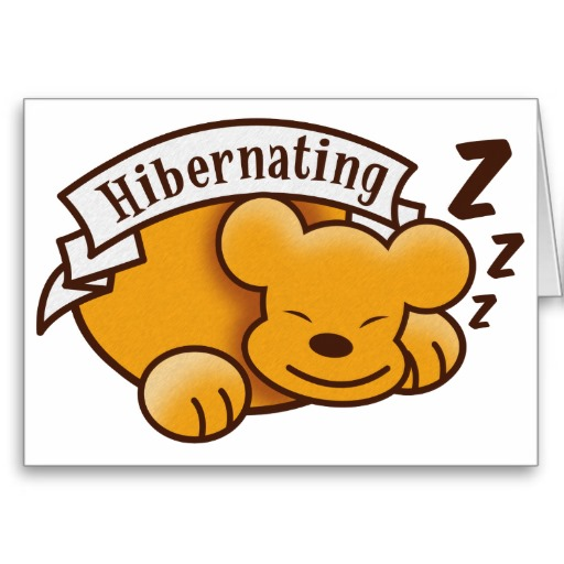 ours-hibernant-mignon-avec-le-zzz-s-carte-rfbe076cfda6d4318a76594a35a789689-xvuak-8byvr-512.jpg